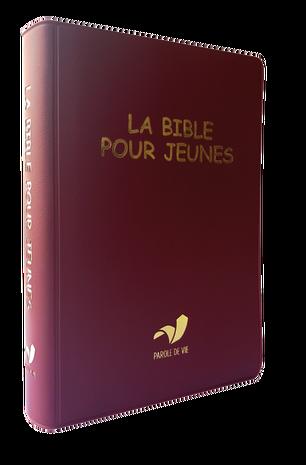 La Bible pour jeunes, vinyle, broché souple